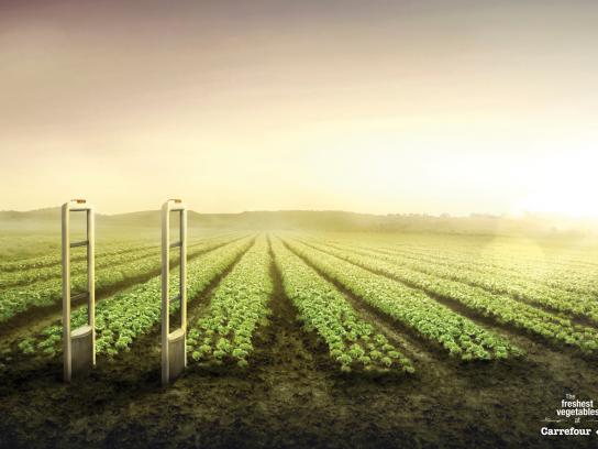Carrefour Print Ad -  Vegetables