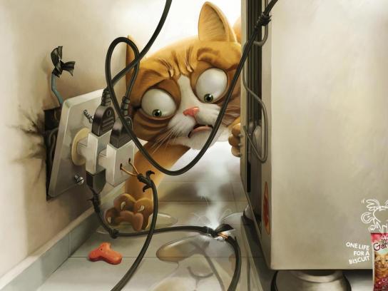 Gatos Print Ad -  Refrigerator