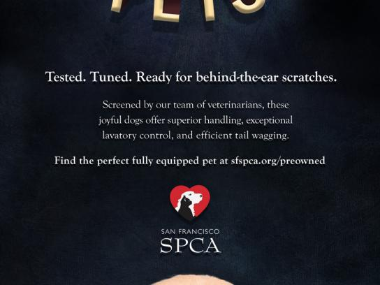 SPCA Print Ad -  Certified Pre-Owned, Dog