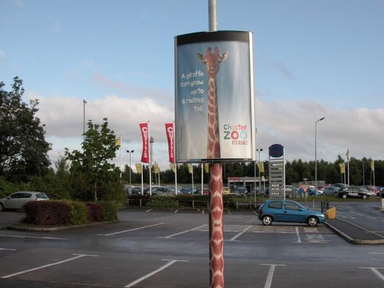 Chester Zoo Ambient Ad -  Giraffe