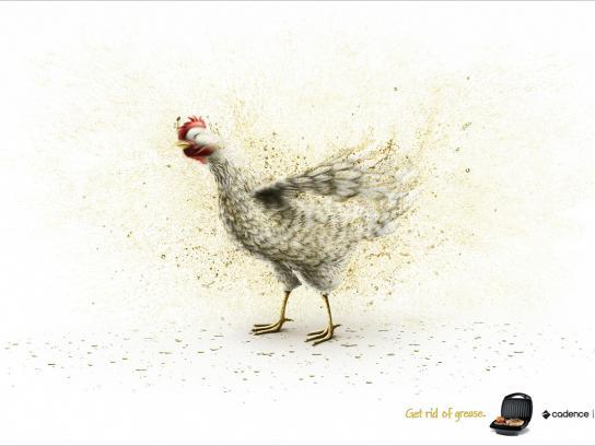 Cadence Print Ad -  Chicken