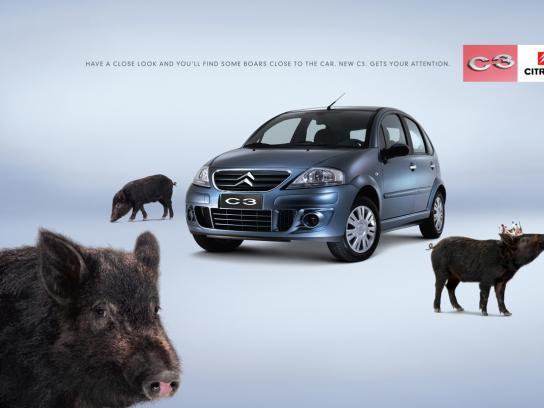 Citroën Print Ad -  Boars