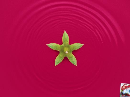 Clight Print Ad -  Liquid Fruit, Blackberry