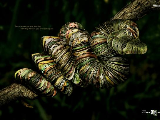 Other Images Print Ad -  Snake
