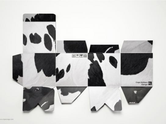 Copa Airlines Print Ad -  Cow