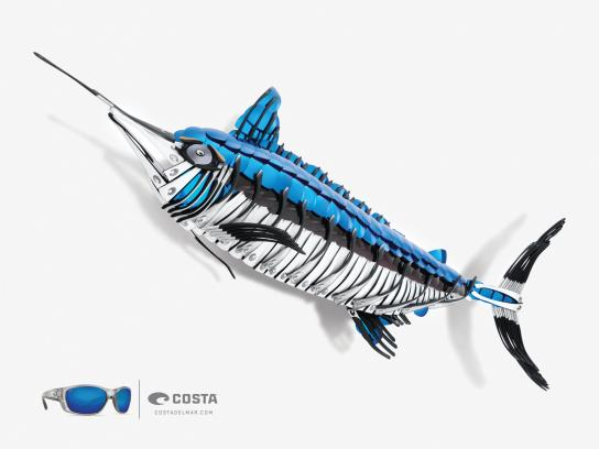 Costa Sunglasses Print Ad -  Marlin