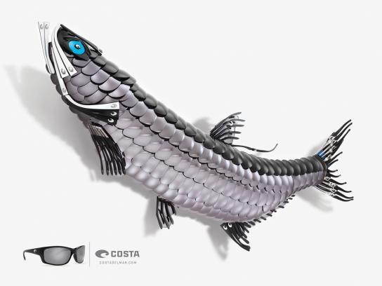 Costa Sunglasses Print Ad -  Tarpon