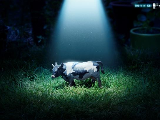 Energizer Print Ad -  Cow
