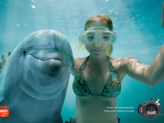 Hugyfot Print Ad -  Dolphin