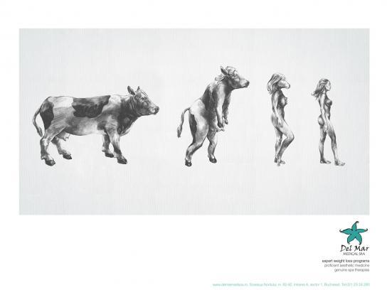 Del Mar Print Ad -  Cow