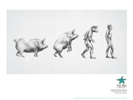 Del Mar Print Ad -  Pig