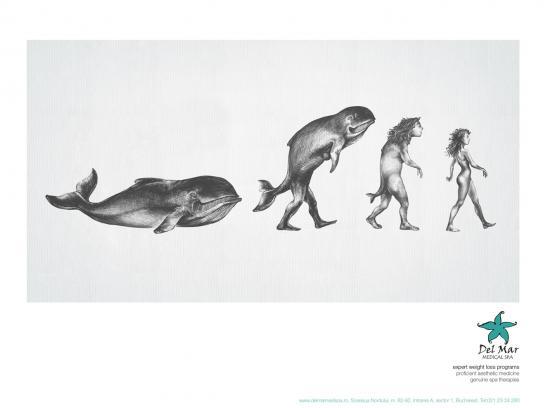 Del Mar Print Ad -  Whale