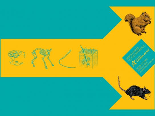Cruzeiro do Sul University Print Ad -  Animals, 1