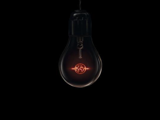 WWF Print Ad -  Light bulb