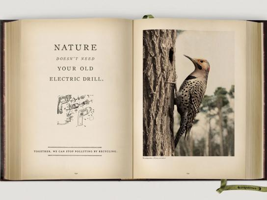 Eco-Systèmes Print Ad -  Woodpecker