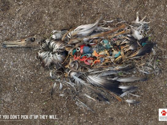 Endangered Wildlife Trust Print Ad -  Top