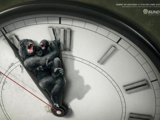Bund Print Ad -  Gorilla