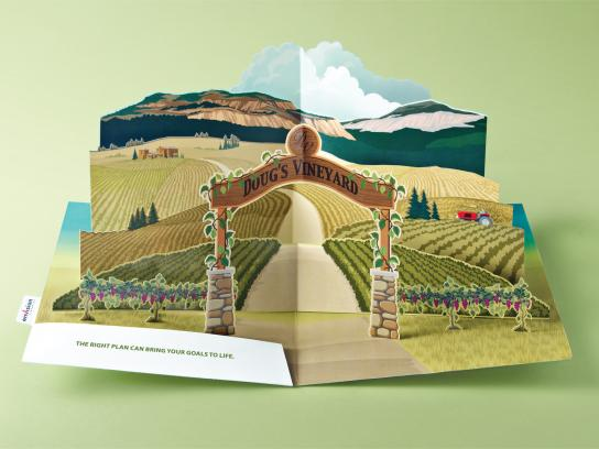 Envision Financial Print Ad -  Pop-Up Vineyard