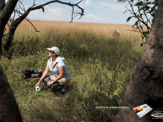 Cape Union Mart Print Ad -  Lioness