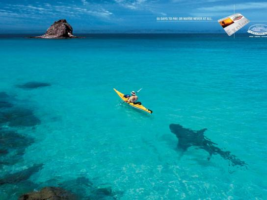 Cape Union Mart Print Ad -  Shark