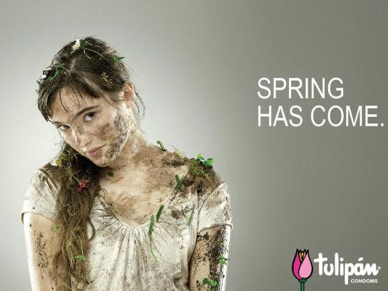 Tulipan Print Ad -  Knocked down, 1