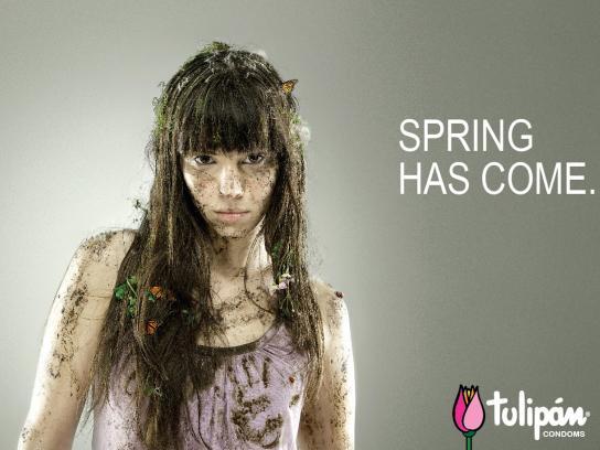 Tulipan Print Ad -  Knocked down, 2