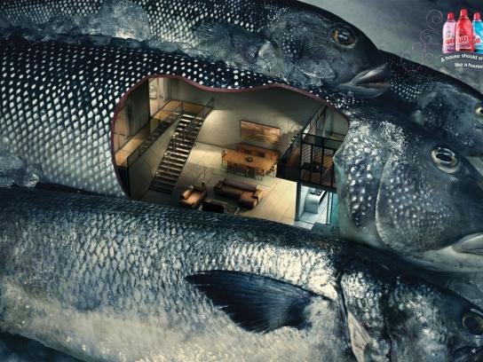Ajax Print Ad -  Fish