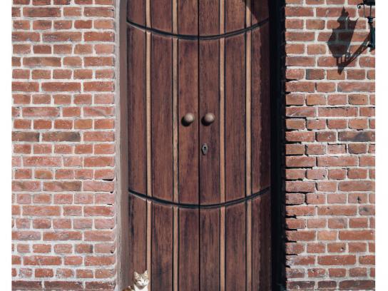 Flipkart Print Ad -  Happy Doors, 2