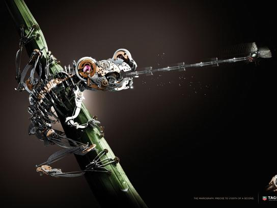 Tag Heuer Print Ad -  Frog