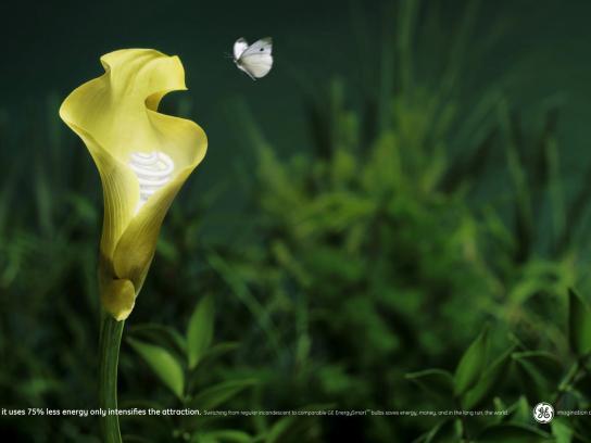 GE Print Ad -  Flower