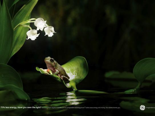 GE Print Ad -  Frog