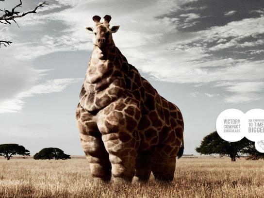 Zeiss Print Ad -  Giraffe