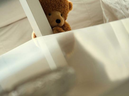 Golden Fist Print Ad -  Teddy