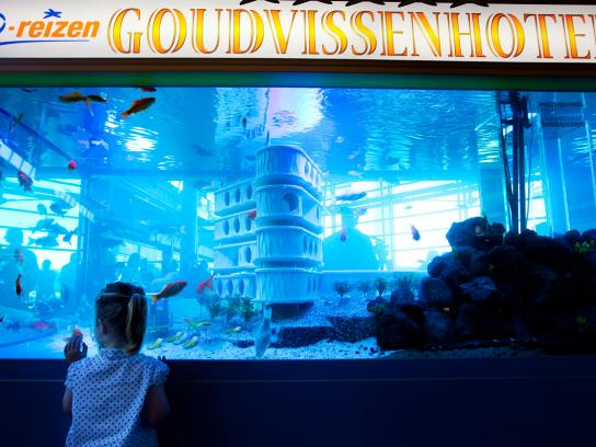 D-Reizen Ambient Ad -  Goldfish Hotel