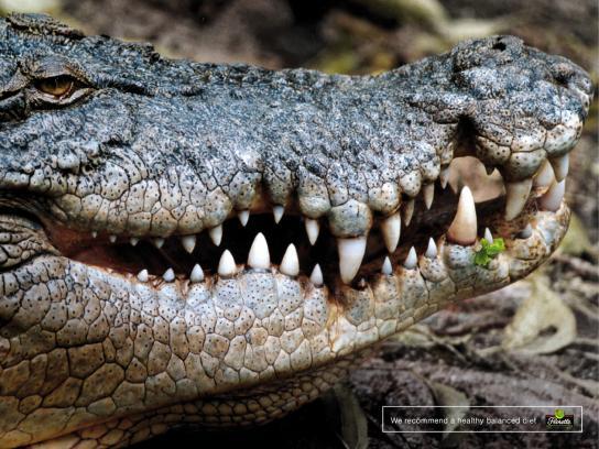 Florette Print Ad -  Crocodile
