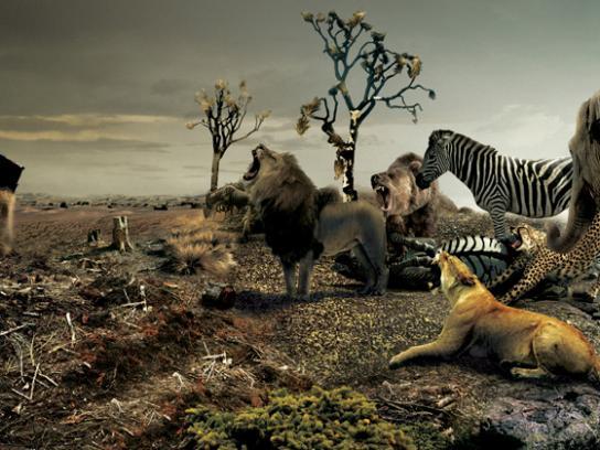 Greenpeace Print Ad -  Wild