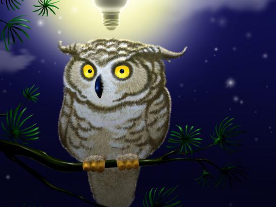 Greenpeace Print Ad -  Owl