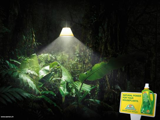 Greenworld Print Ad -  Lamp