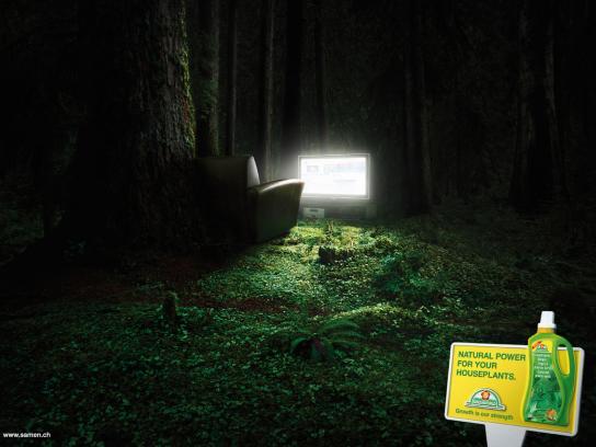 Greenworld Print Ad -  TV