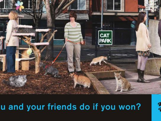 Washington Lottery Outdoor Ad -  Cats