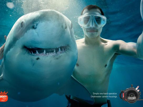 Hugyfot Print Ad -  Shark
