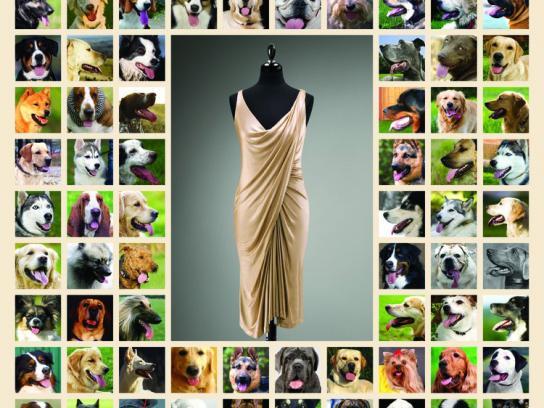 Harvey Nichols Print Ad -  Dogs