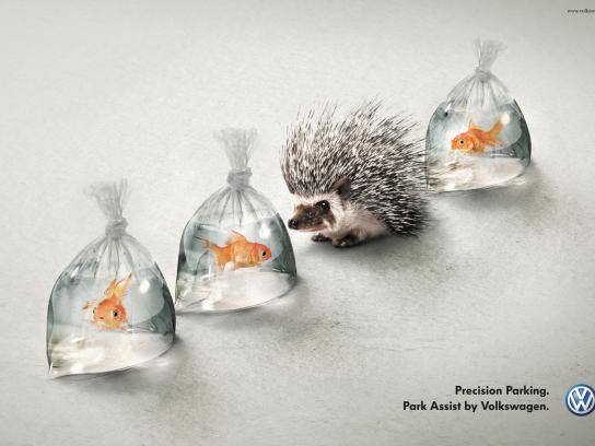 Volkswagen Print Ad -  Hedgehog and Fish