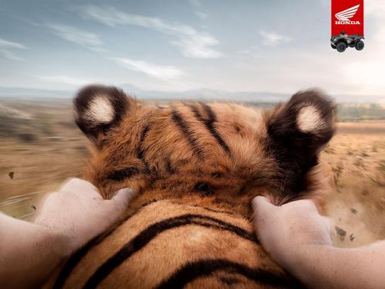 Honda Print Ad -  Tiger