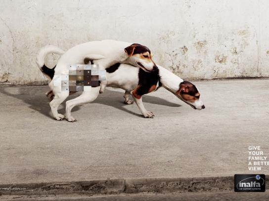 Inalfa Print Ad -  Doggy