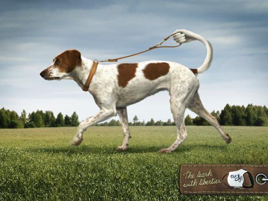 Curli Print Ad -  Dog, 1