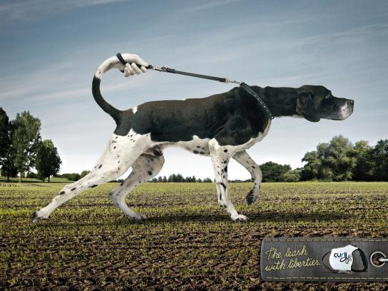 Curli Print Ad -  Dog, 2