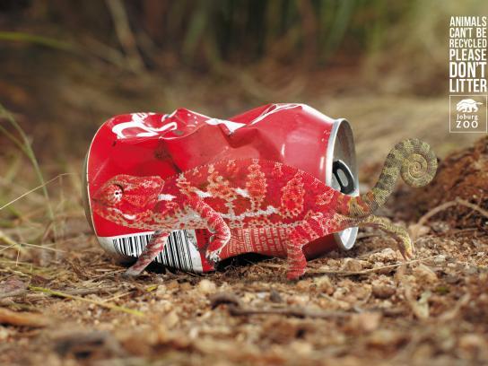 Johannesburg Zoo Print Ad -  Anti-Litter Campaign, Chameleon