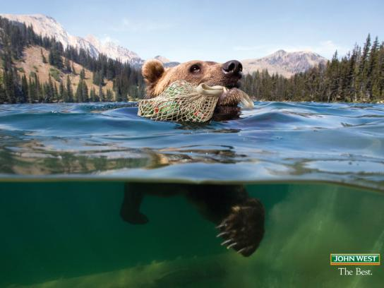 John West Print Ad -  Bear