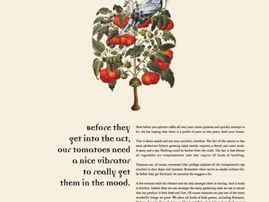 Kanu Somany Print Ad -  Tomatoes